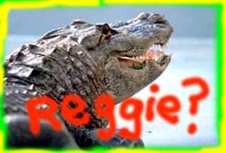 reggie-at-the-zoo2.jpg