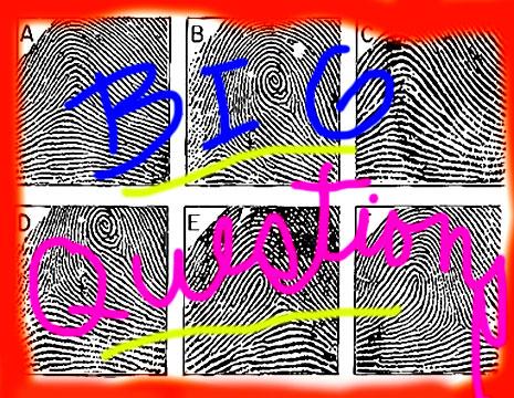fingerprints-3.jpg