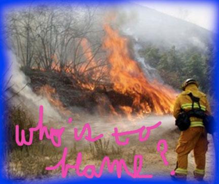 crafton-fire-arson-cases-2