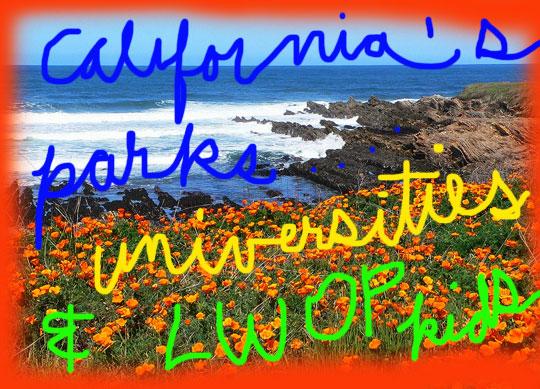 montana-de-oro-state-park---california-poppy-docentjoyce369-ll