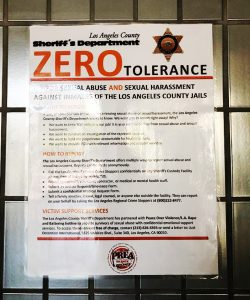 Zero tolerance grand theft anal